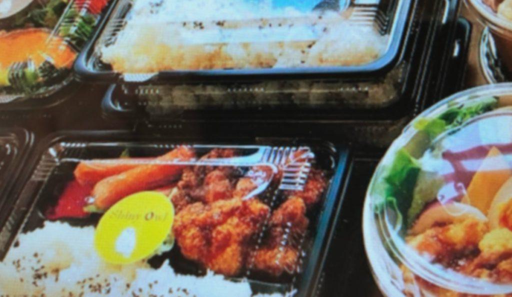 owl- Lunch box